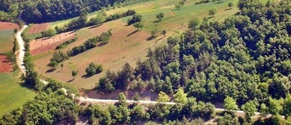 Geyve-ve-Köylerinde-Satılık-Arsa-Tarla-Kelepir-Ev-Bina-Çiftlik-İlanı-001